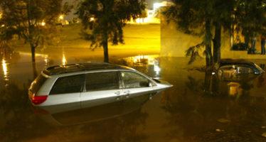 De acuerdo a estudio, los desastres naturales causan 50 mil muertos al año