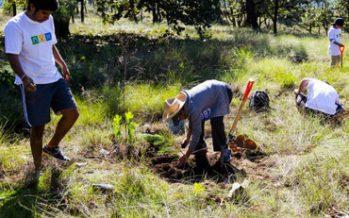 Llaman en seminario a conservar el Bosque La Primavera