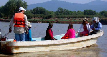 80% de avance en actividades de mantenimiento del Lago de Pátzcuaro