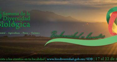 Biodiversidad es bienestar, lema de la 6ª Semana de la Diversidad Biológica en México