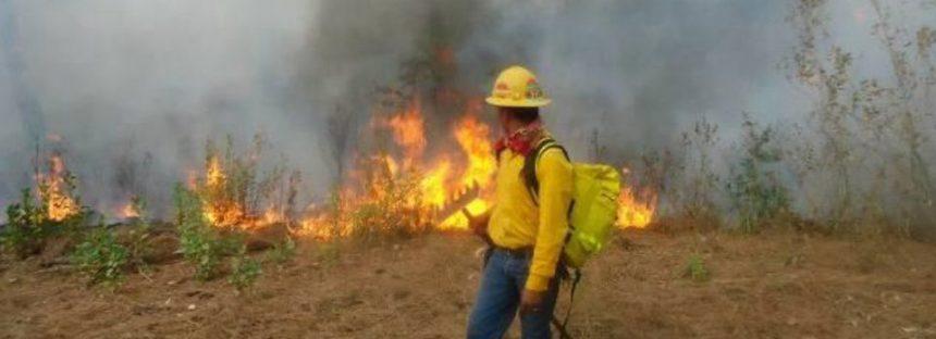 1,766 Ha afectadas por Incendios forestales que son atendidos por más de mil brigadistas michoacanos
