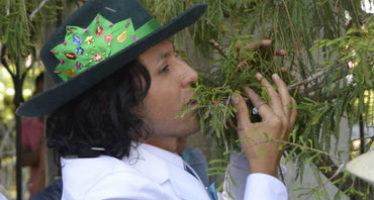 Ecologista se casa simbólicamente con milenario Árbol del Tule