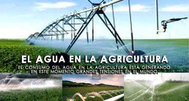 El consumo del agua en la agricultura, está generando tensiones en el mundo
