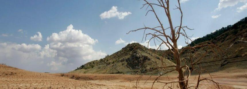 Día Mundial contra la Desertificación y la Sequía: 17 de junio *