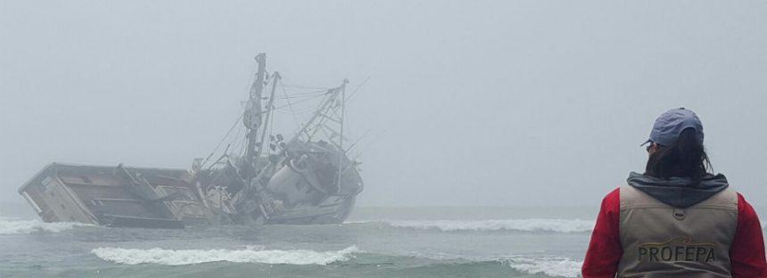No hay evidencia de daño a ecosistema por encallamiento de barco sardinero Ocean Venture