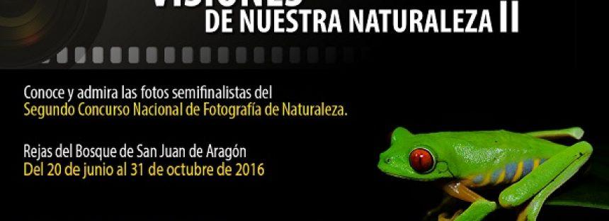 Visiones de Nuestra Naturaleza II, en el Bosque de San Juan de Aragón