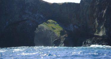 17 áreas naturales protegidas de México se incorporan al SINAP