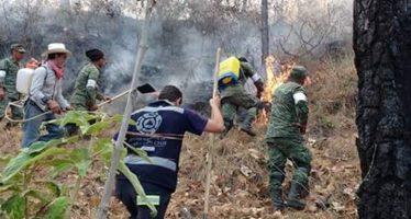 Continúa el combate coordinado a los incendios forestales