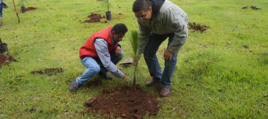 SEMARNACC se suma a la conmemoración del Día del Árbol