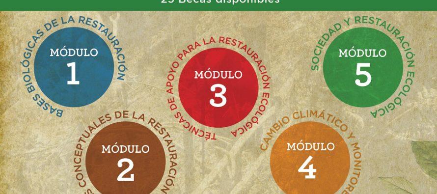 Diplomado Restauración ecológica de bosque de niebla, en Veracruz