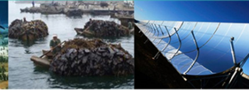 Foro de Energías Renovables en el CICESE