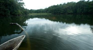 En Ocosingo, Chiapas, México tiene cuatro zonas de extraordinaria importancia ecológica e histórica