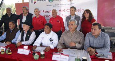 SE SUMAN LOS 113 MUNICIPIOS A LOS CONSEJOS DE DESARROLLO REGIONAL FORESTAL