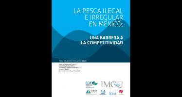 La Pesca Ilegal e Irregular en México: Una Barrera a la Competitividad