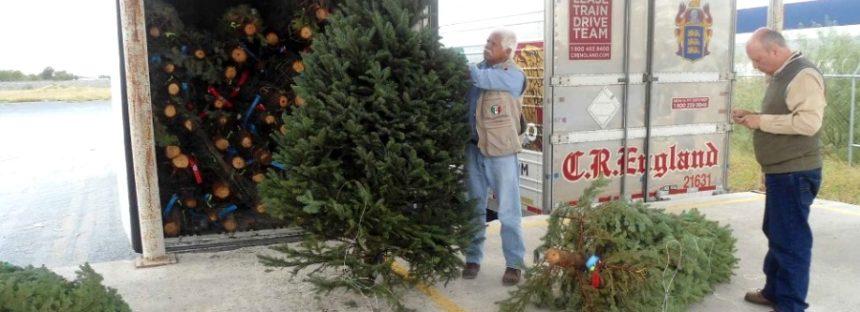 Comienza inspección de árboles de navidad en la aduana del puente Colombia en Nuevo León
