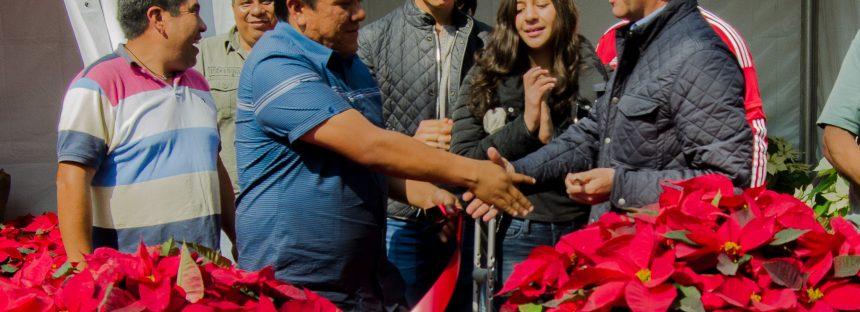 """""""Nochebuena Navidad 2016"""" exposición en bosque Chapultepec de la Ciudad de México"""