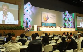 COP13 logra la colocación de la biodiversidad en políticas y planes de desarrollo