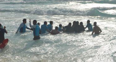 Rescatan 3 delfines varados en playa de zona hotelera de Cancún