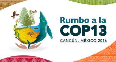 En Cancún, 13 Conferencia de las Partes sobre Biodiversidad (COP13)
