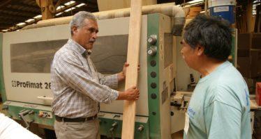 Incorporarán 20 mil hectáreas para aumentar la producción de madera en Michoacán