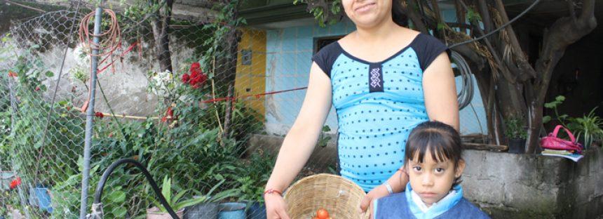 Agricultura familiar una alternativa para el desarrollo socioeconómico regional