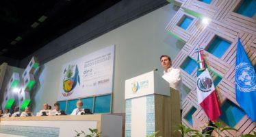 El desarrollo sustentable es la única forma para lograr un presente y futuro más limpio y seguro