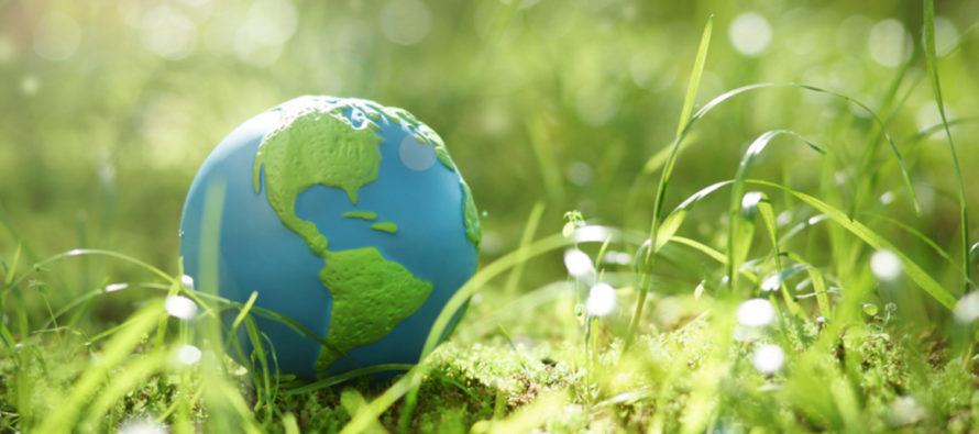 5 consejos para cuidar al ambiente en comunidad