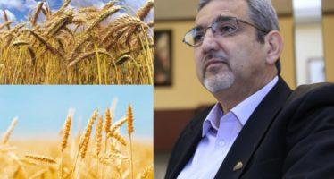 Michoacán ocupa el tercer lugar en producción de trigo a nivel nacional