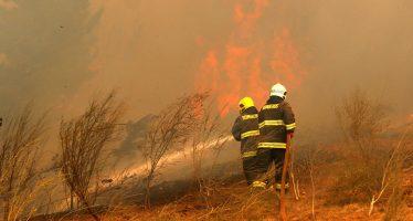 México brindará 58 técnicos a Chile para combatir incendios forestales