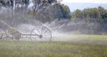 Sistemas de riego permiten ahorrar mil millones de metros cúbicos de agua en México