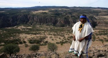 Once asesinatos de indígenas activistas además de Isidro Baldenegro han ocurrido en el territorio Tarahumara