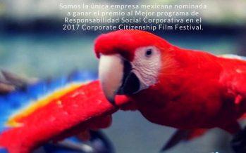 Volando a casa, Guacamaya Roja; el proyecto de Experiencias Xcaret