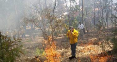 Imponen reglas para regular el uso de fuego en actividades agropecuarias y evitar incendios forestales en Michoacán