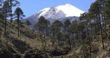 El Parque Nacional Pico de Orizaba cumple 80 años de ser área natural protegida