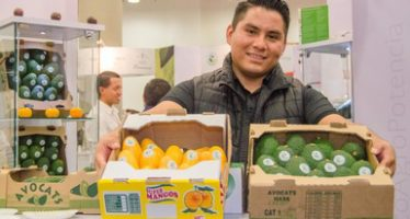2016 registró un aumento del 13.7% en exportaciones agropecuarios en México