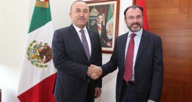 Comisión Binacional México-Turquía concluye exitosamente