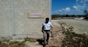 Clausuran dos desarrollos inmobiliarios en Yucatán que afectaron más de 12.5 hectáreas de selva