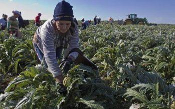 Más de 15 mil mujeres del campo michoacano reciben apoyos del Gobierno del Estado