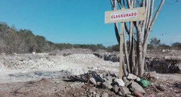 Clausuran predio Tetiz, Yucatán, por realizar actividades ilegales de cambio de uso de suelo en terreno forestal