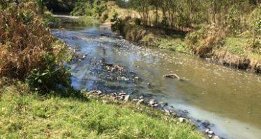 Persiste contaminación por aguas negras en el río San Felipe en Tamaulipas