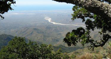 Tribunal cancela autorización que le dio la Semarnat al proyecto minero Los Cardones, en La Paz