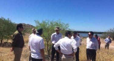Avanza recuperación de estero El Soldado en Guaymas, Sonora