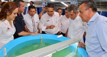 La acuacultura en Michoacán vive una nueva etapa: Compesca