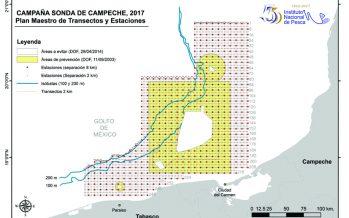 Evalúan recursos marinos con el Plan Maestro de Investigación para la Reactivación de la Actividad Pesquera en la Sonda de Campeche