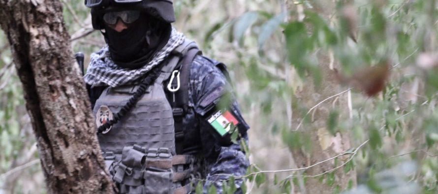 Inhibe delitos ambientales en Reserva de la Biosfera de Calakmul, Misión Ambiental de la Gendarmería