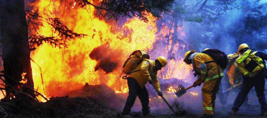4 de mayo: Día Internacional del Combatiente de Incendios Forestales