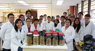 Crean alumnos de FMVZ-UABJO microsilos de alimento para ganado