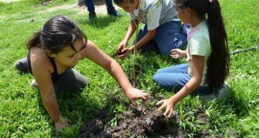 En Morelos, van a restaurar 2 mil 856 hectáreas
