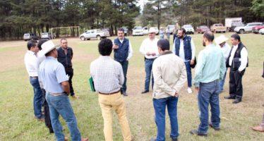 Nueva reserva natural en Michoacán incorporaría más de 14 mil hectáreas