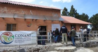 Parque Nacional Cofre de Perote celebra 80 años de su decreto como ANP